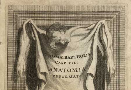 Thomas Bartholin, Skin in a frame, 1651. Wellcome Library
