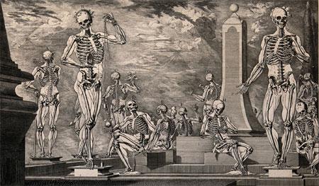 Skeletons, Crisóstomo Martínez