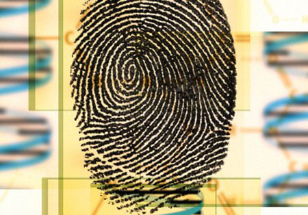 DNA fingerprinting: artwork