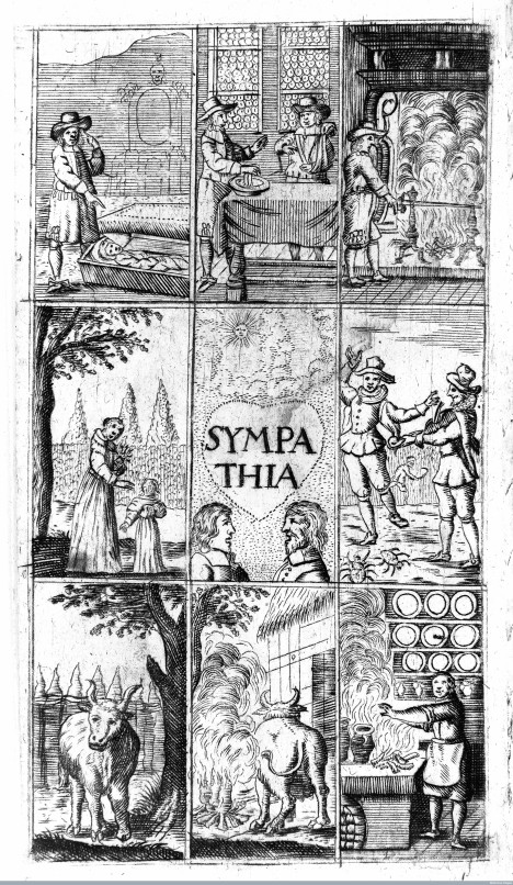 Frontispiece illustration of 'Sympathia' (Powder of Sympathy) Credit: Wellcome Library, London. Wellcome Images