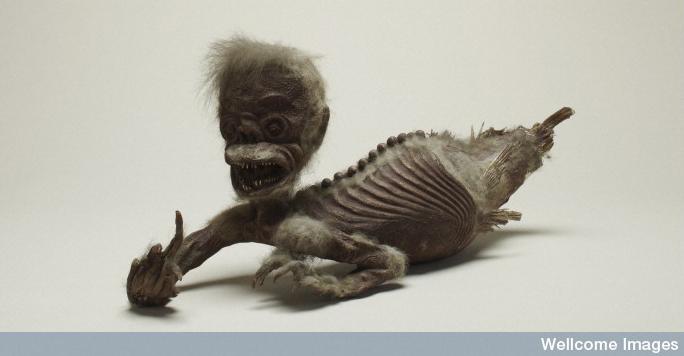 Wellcome mermaid specimen (held at Science Museum).