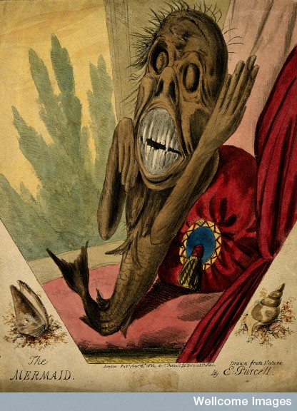 A grotesque mermaid, amidst luxurious cushions and drapes, and framed by two shells, 1822.