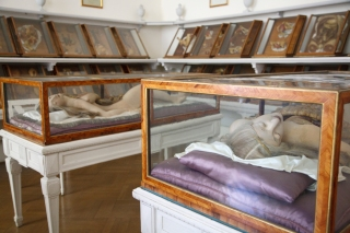 """""""Anatomical Venuses,"""" Wax Models with human hair in rosewood and Venetian glass cases,The Josephinum, Workshop of Clemente Susini of Florence circa 1780s, Vienna, Austria. Photo by Joanna Ebenstein, Morbid Anatomy"""