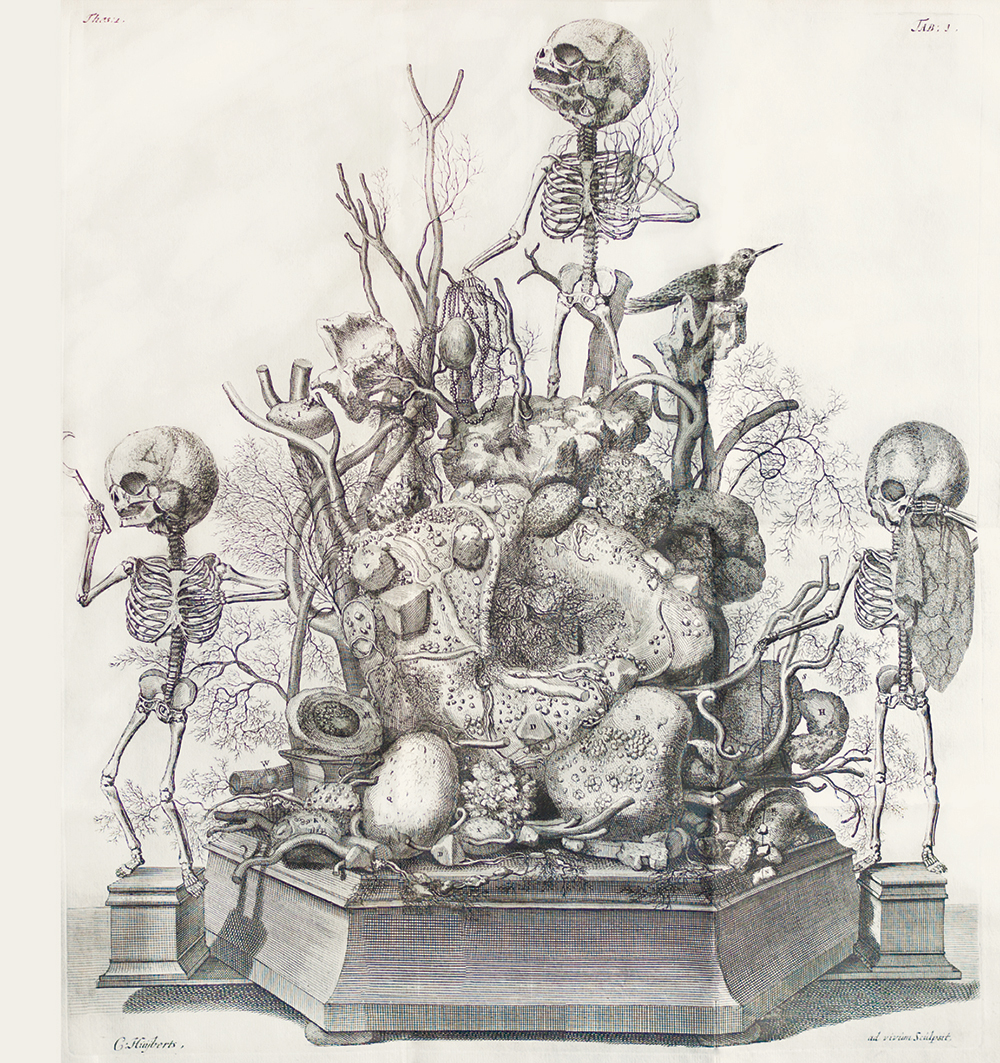 Tableau with Three Foetal Skeletons, from Frederik Ruysch, Opera omnia..., Amsterdam: Janssonius Waesbergen, 1721-1727. Courtesy of the New York Academy of Medicine Library.