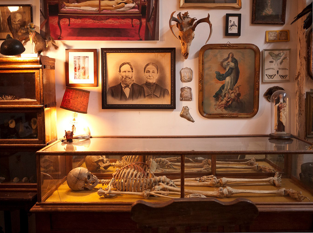 The Morbid Anatomy Library. Photo by Joanna Ebenstein, Morbid Anatomy