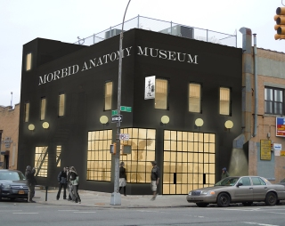 Rendering of the Morbid Anatomy Museum by Architects Robert Kirkbride and Anthony Cohn