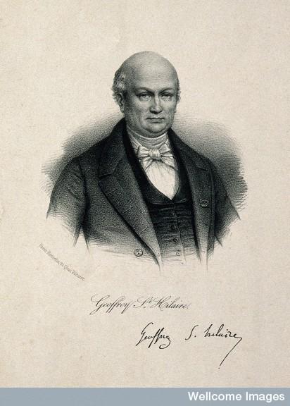 Etienne Geoffroy Saint-Hilaire.