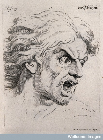 The face of a man experiencing fear, Charles de Brun.