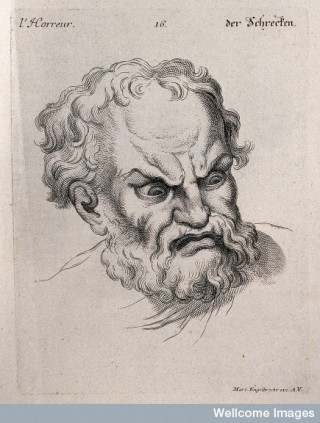The face of a man expressing horror, Charles Le Brun.