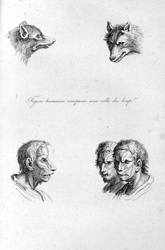 A human compared to a wolf.