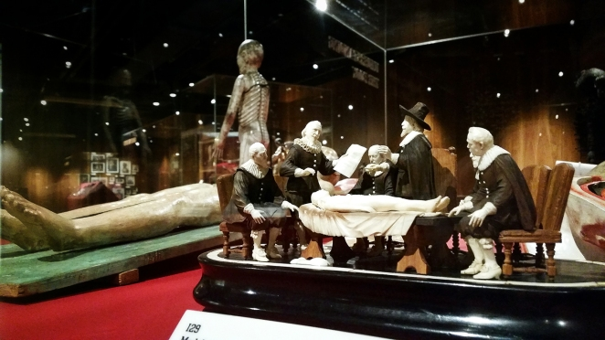 This 18th century model resembles Rembrandt's 1632 painting The Anatomy Lesson of Dr Nicolaes Tulp.