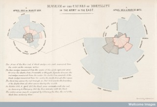 Florence Nightingale's coxcomb diagrams, showing causes of soldiers' deaths. The blue wedges represent deaths from preventable disease.