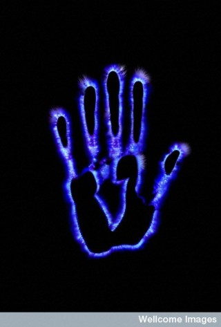 Hand showing the surrounding electromagnetic field. (Credit: N. Seery, Wellcome Images)