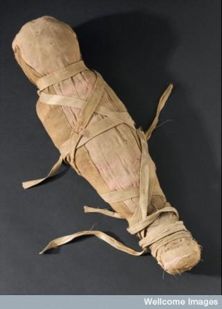 Mummified infant.