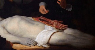 Detail from the Anatomy Lesson of Dr Nicolaes Tulp by Rembrandt.
