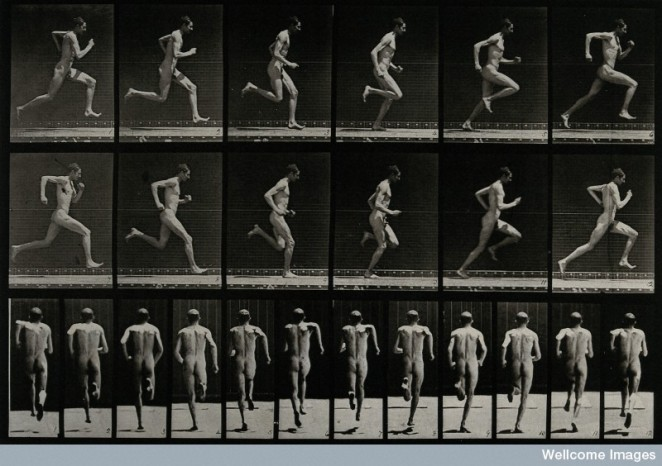 """""""A man sprinting."""" Photogravure after Eadweard Muybridge, 1887. Courtesy of Wellcome Images, London."""
