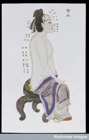 L0039975 Dumai (Governor Vessel), C17/18 Chinese book art