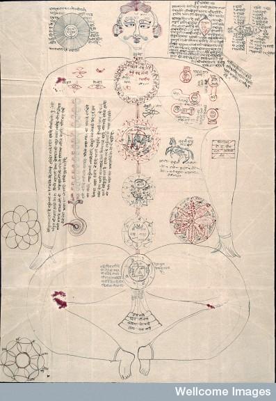 L0024647 Indic Manuscript 347, side a