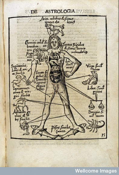 L0012390 De Astrologia. Astrological Man: 1503