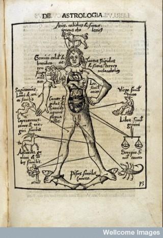 L0012390 De Astrologia. Astrological Man: 1503