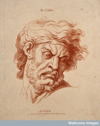 V0009342 The face of a bearded man expressing anger. Etching in the c