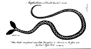 "Edward Bancroft's essay on the natural history of Guiana (for which this is the frontispiece) features his study of ""torporific eels""."