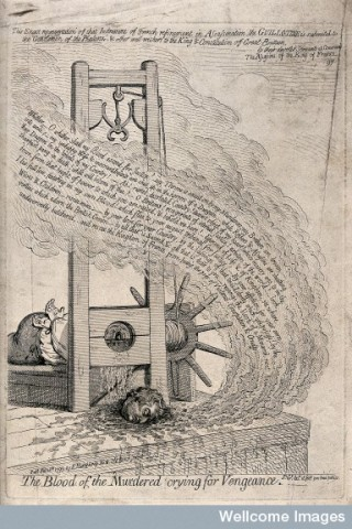 The head of a man cut off by a guillotine.