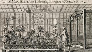 Perpetual electrified garden