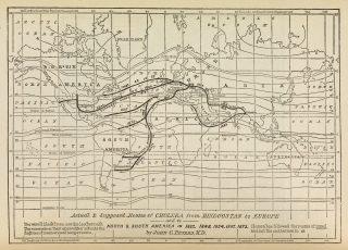 L0074539 Actual & supposed routes of Cholera from Hindoostan to Europe