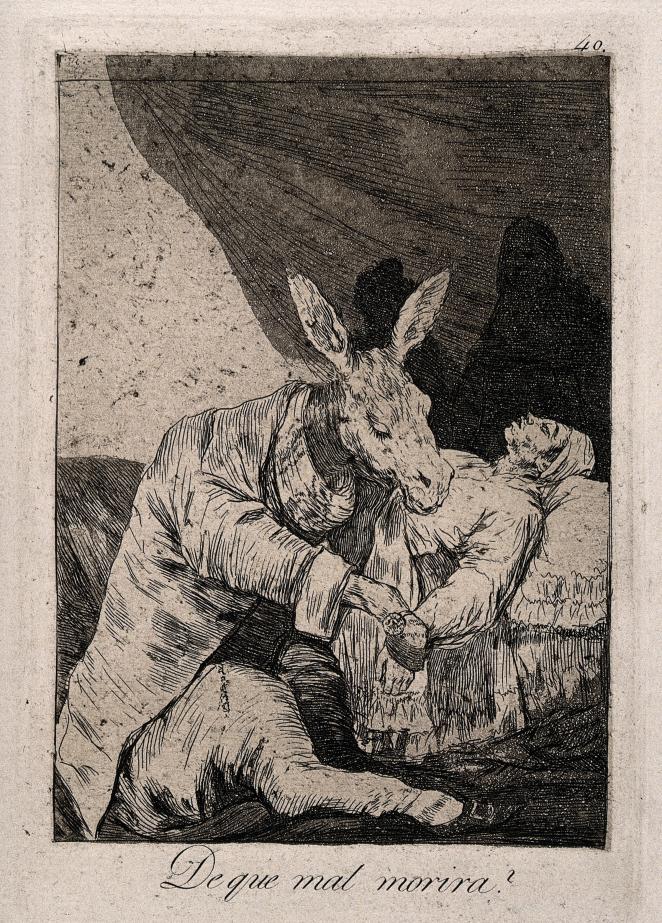 V0011972-goya-donkey